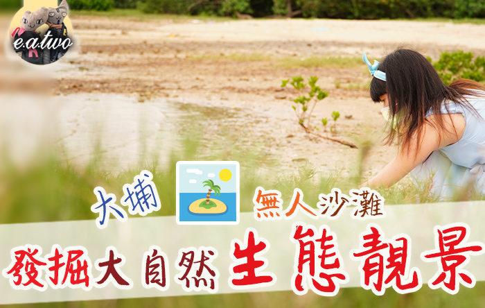 大埔激罕無人沙灘 發掘大自然生態靚景