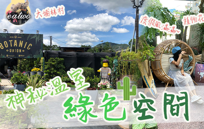 大埔林村神秘溫室綠色空間打卡 異國植物小花園渡假風滿滿