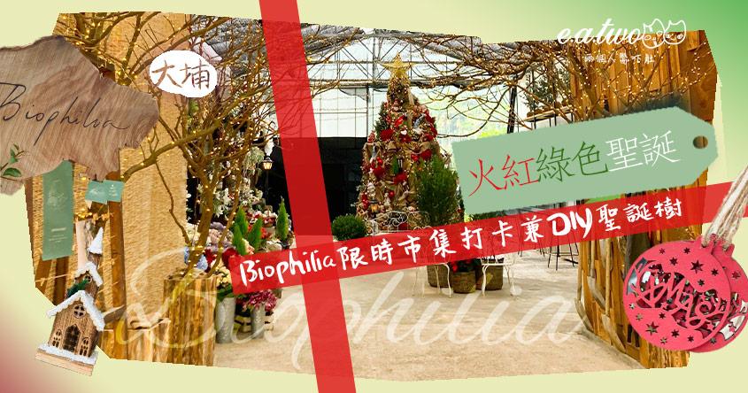 大埔林村火紅綠色聖誕 Biophilia限時市集打卡兼DIY聖誕樹