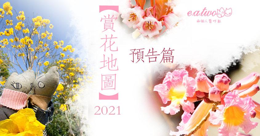 【2021賞花地圖】春天花季預告!櫻花/紅花風鈴木/藍花楹最完全攻略 必睇20種花卉花期+開花地點
