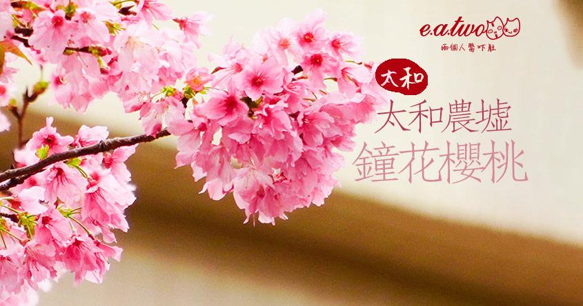【2021賞花地圖】新年氣候和暖 驚艷鐘花櫻桃閃現太和農墟後門