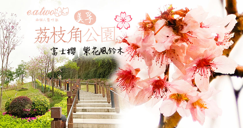 【2021賞花地圖】荔枝角公園首種富士櫻 6棵櫻花樹矗立園內 同場加映有紫花風鈴木
