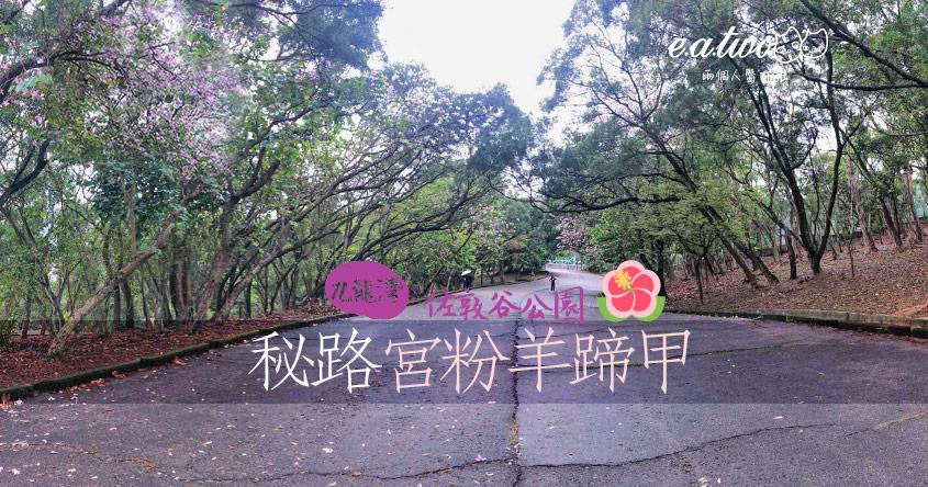 【2021賞花地圖】佐敦谷公園杜鵑花開花 神秘小路攝宮粉羊蹄甲和風味濃